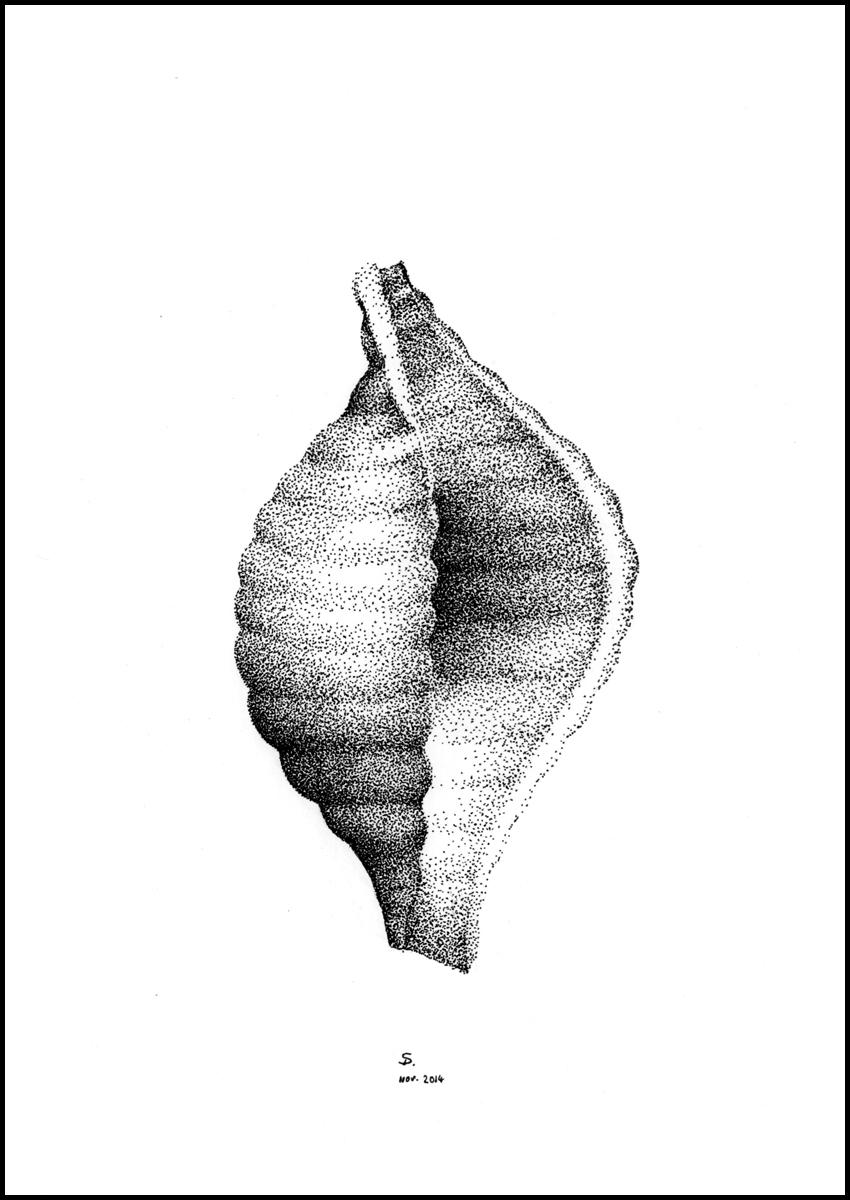 drawing_pasta_04